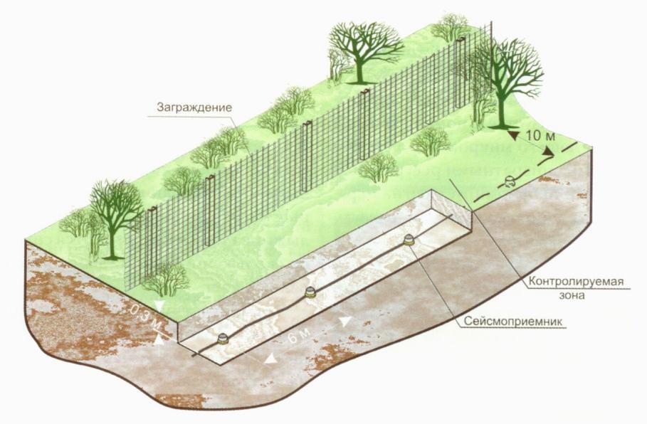 Рисунок 13 – Расположение геофонов среди растительности